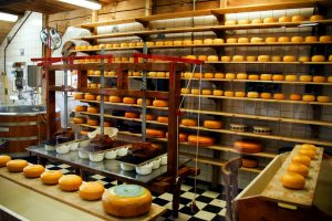 cheese factory, cheese, products