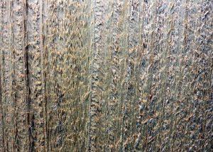 Holz, Textur