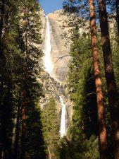 bomen waterval, bos, berg