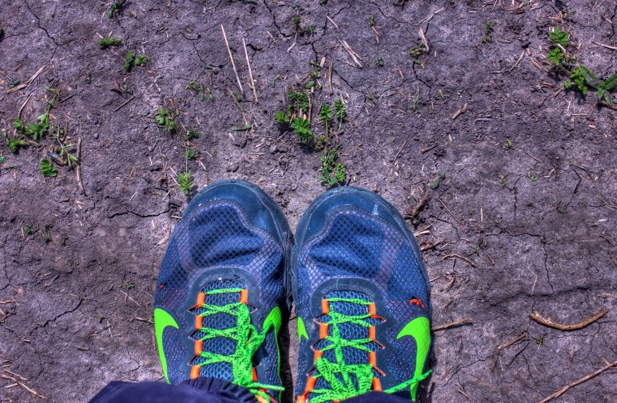 green sport shoes, ground