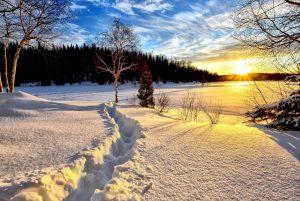 inverno, mattina, alba, paesaggio