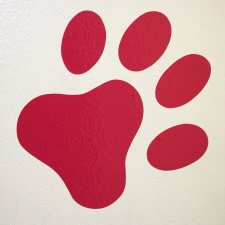 red, paw print, wall, design
