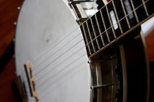 five strings, banjo instrument, music