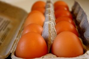 chicken eggs, carton, food