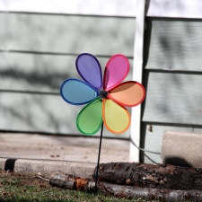 colorful, pinwheel, backyard, decoration
