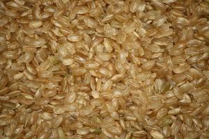 short grain, brown rice, seed