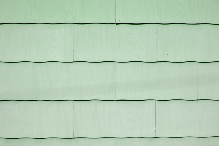 Free Picture Light Green Paint Scallop Asbestos