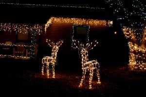 casa, noche, noche de Navidad, carámbano, renos, luces