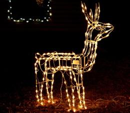 renos, decoración de Navidad, ornamento, luces, noche