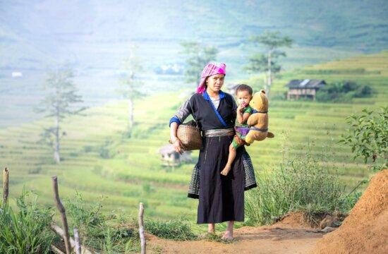 orsacchiotto, donna, madre, bambino, l'agricoltura, l'Asia, la raccolta