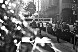 straat met bomen, gebouwen, auto, city