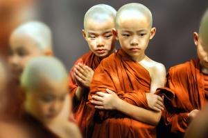 bald, buddhism, children, religion, monk