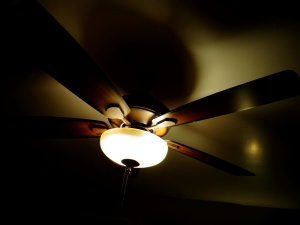 ceiling fan, light, darkness, interior, lamp