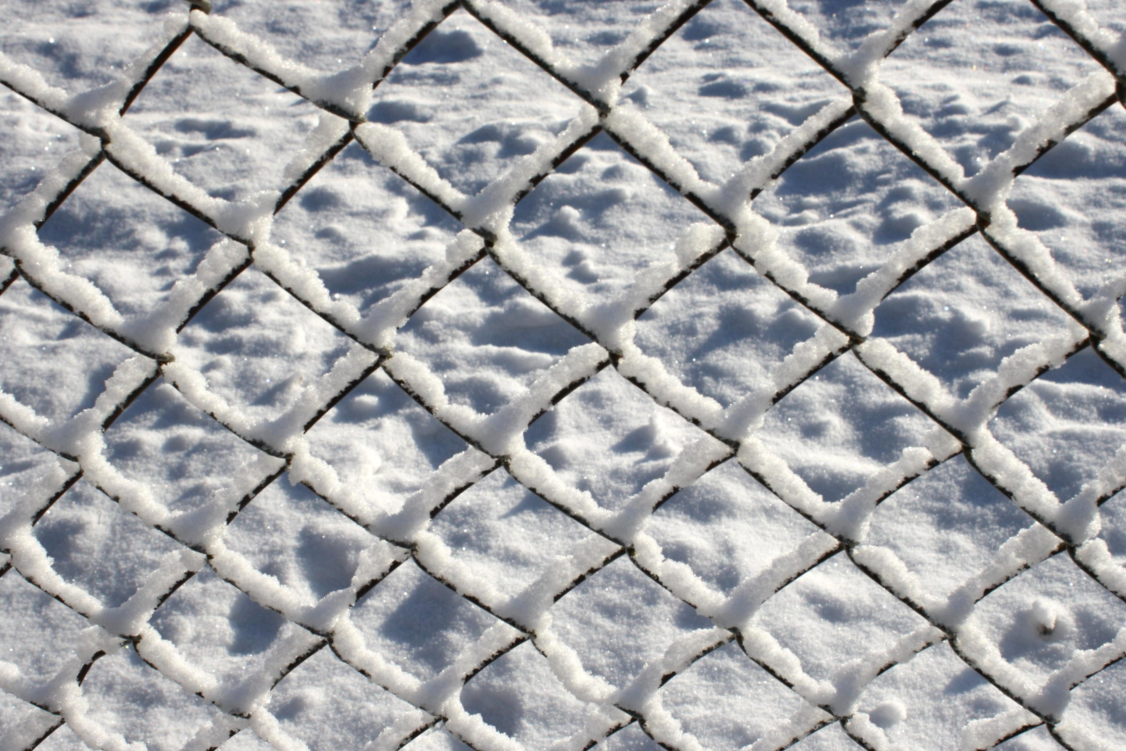 Free picture: wire fence, coated, snow