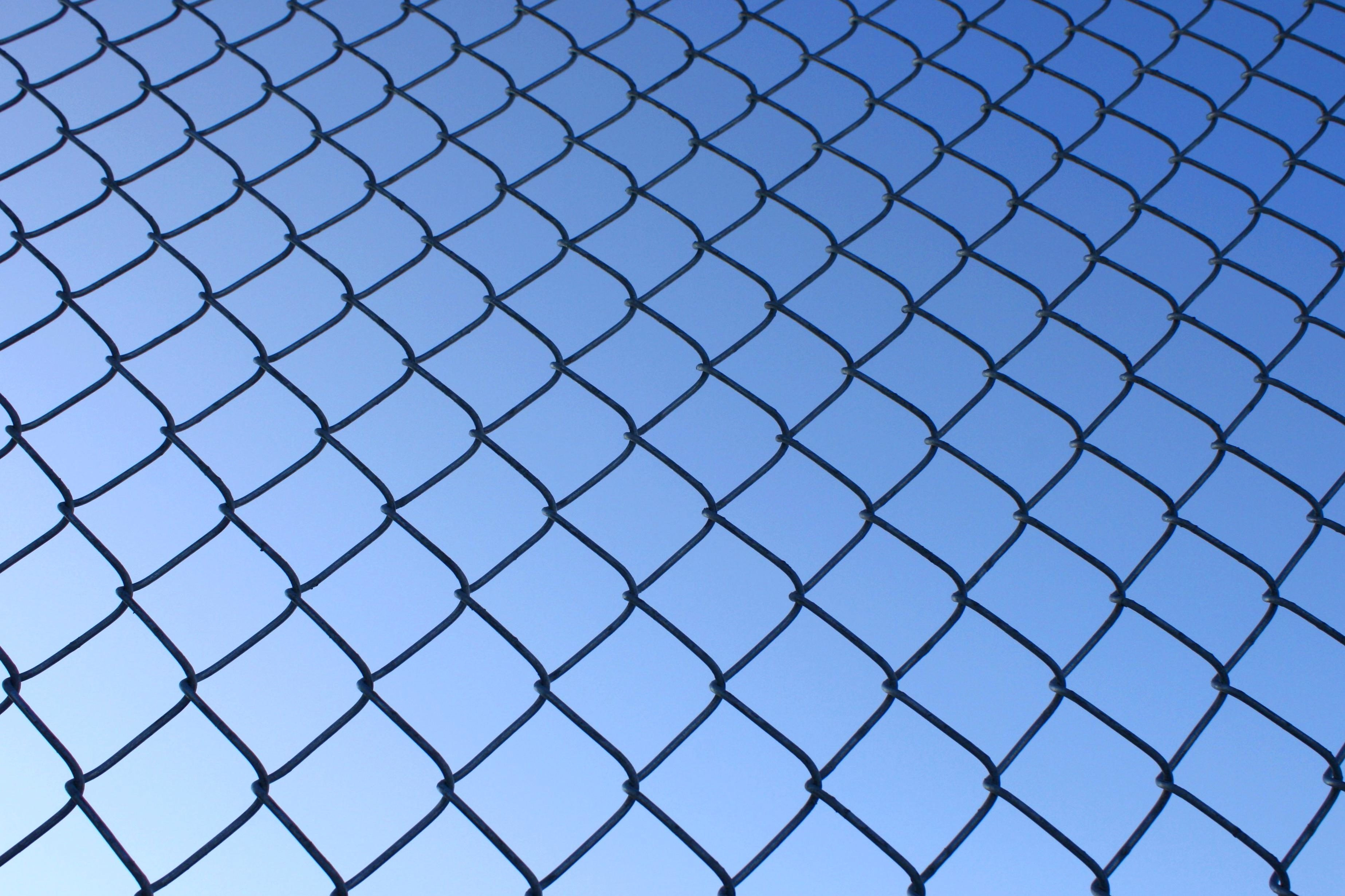 Free picture: wire fence, texture