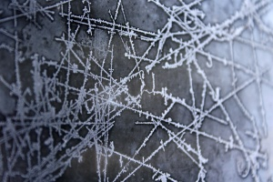 helada, hielo, modelo, congelados, los cristales de hielo, textura