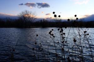 lac, crépuscule, novembre