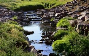 creek, stream, small waterfall, river, nature