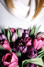 tulip, bouquet, love, petals, romantic, beautiful, blooming