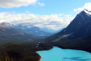montaña, árboles, valle, agua, invierno, maderas