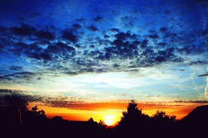 tramonto, viaggiare, alberi, natura, cielo