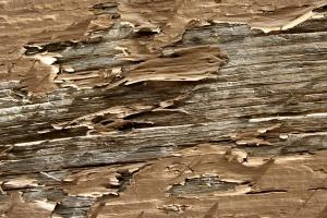 pelar color, Tablón pintado de color marrón, textura