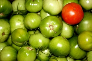 ripe tomato, green tomatoes, vegetable
