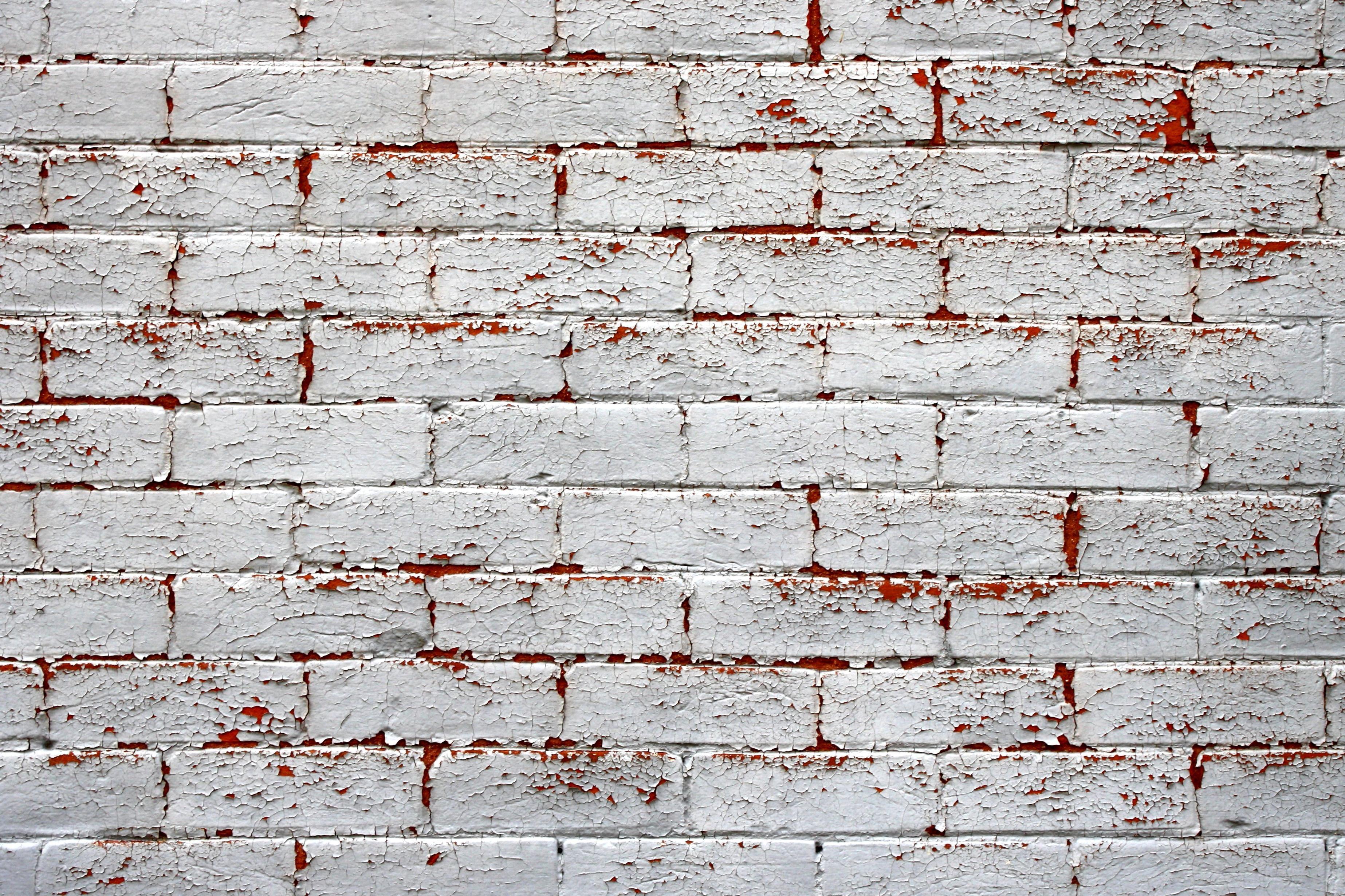 Foto gratis bianco muro dipinto mattoni muro - Cabeceras pintadas en la pared ...