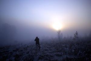 brumeux, brouillard, lever, coucher de soleil, personne