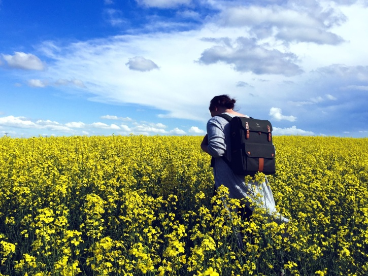 flower, field, summer, woman,  agriculture, backpack