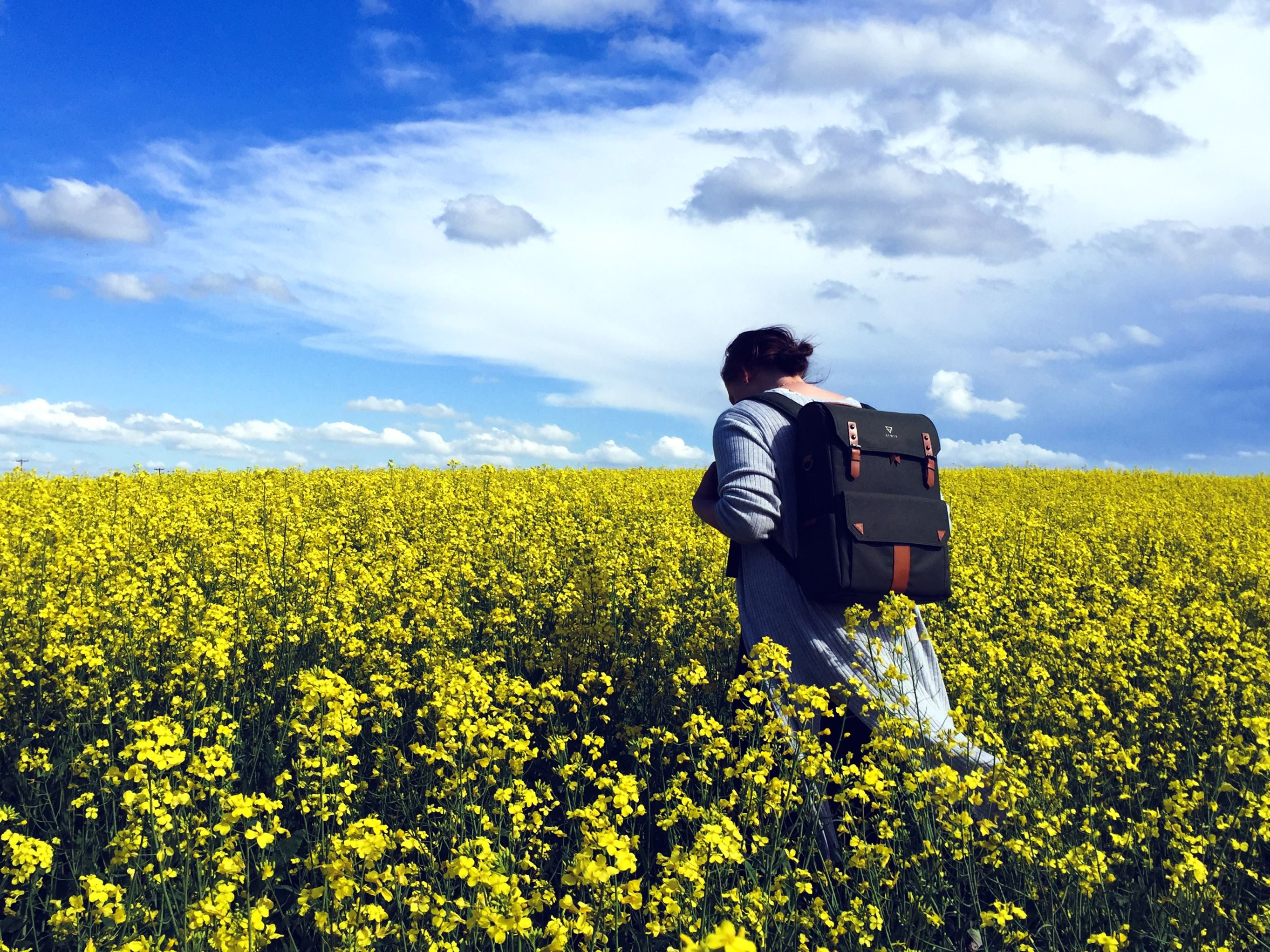 Free Picture Flower Field Summer Woman Agriculture