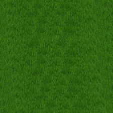 Textur, grünes Gras