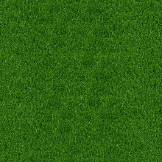 texture, green grass