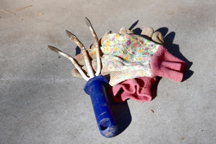garden gloves, three prong hoe