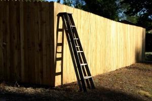 ladder, wooden fence, planks, backyard