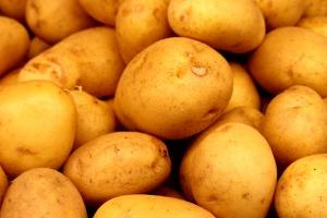 картофель, сельское хозяйство, пот картофеля, овощей
