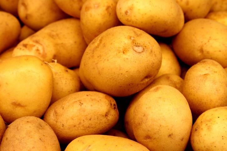 potatoes, agriculture, sweat potato, vegetable