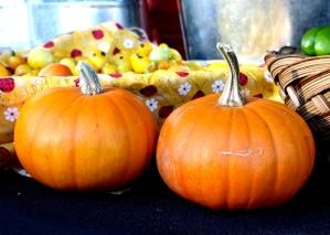 two pumpkins, autumn