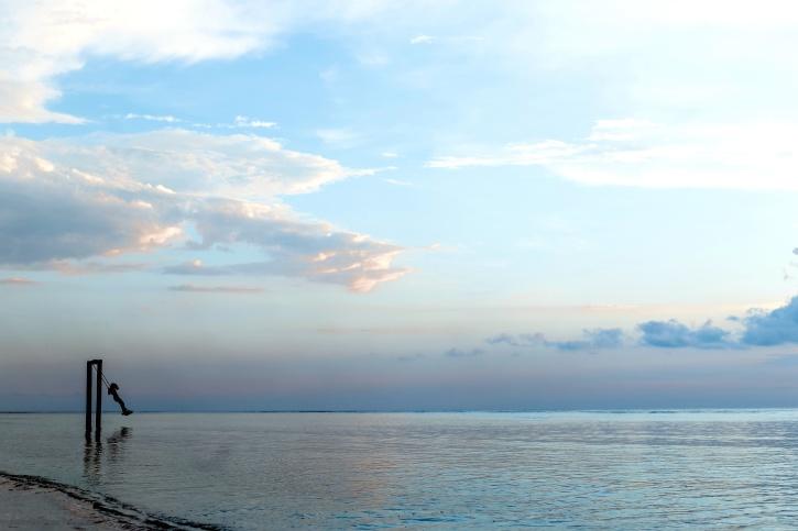 seashore, shore, swing, woman, beach