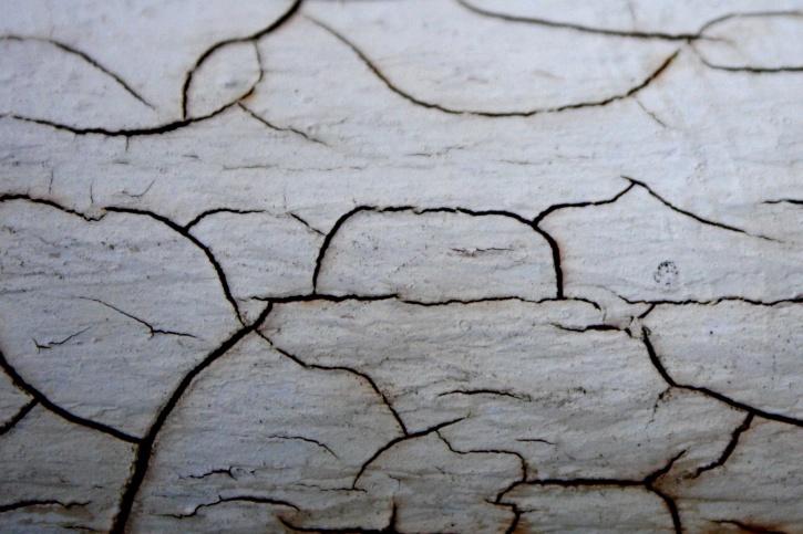 cracks, paint, white paint, wooden plank