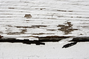 white paint, wooden planks, paint, texture