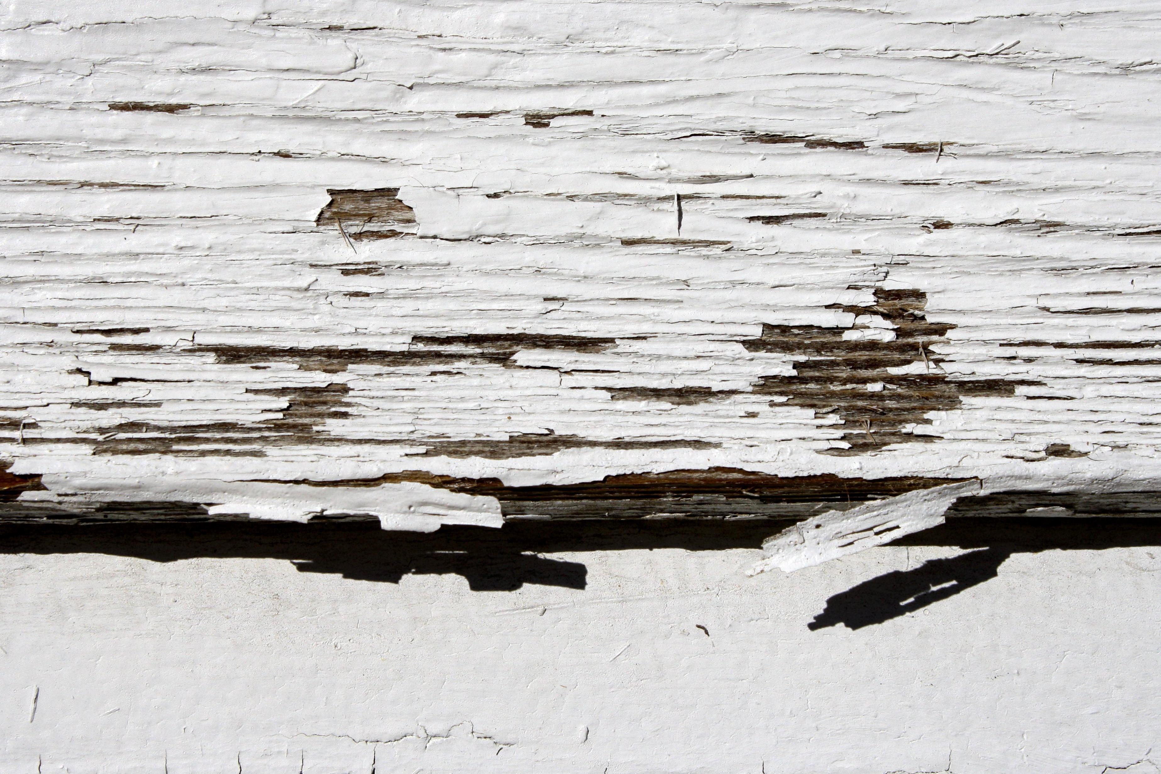 Imagen gratis pintura blanca tablas de madera pintura - Pintura blanca para madera ...
