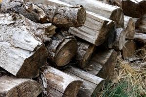 firewood, pile