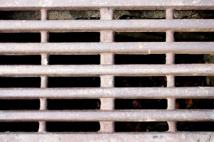 drain hole, grate, metal, texture