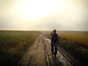 man, summer, field, grass, person, road, sunny, walking