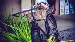 cyklar, hjul, blommor, gräs,