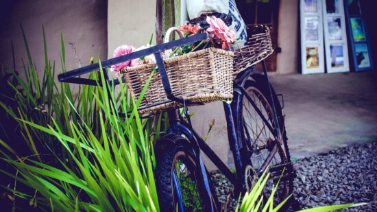 bicycle, wheel, flowers, grass,