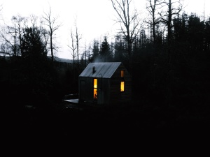 bungalow, environment, forest, wooden house, travel