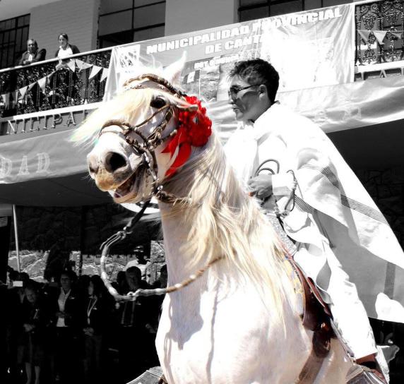 horse, smiling, man, riding, festival, street, crowd