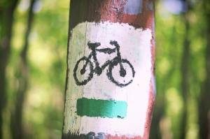 bicycle route, sign, painted tree, tree trunk